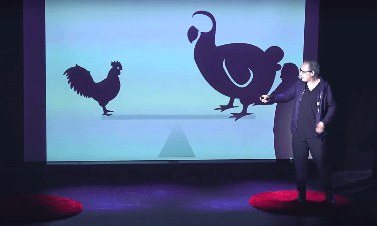 TedxRiverdale: Learning and Chickens